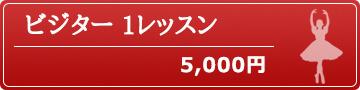 ビジター 1レッスン 5,000円